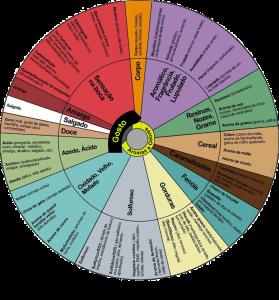 Roda de aromas e sabores provenientes da fermentação.